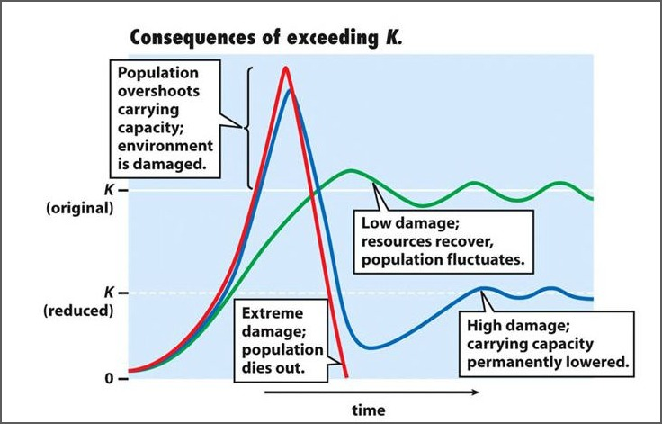 Population limit consequences of exceeding carrying capacity
