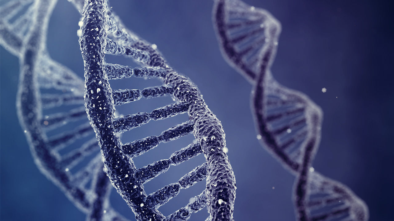 Collecting and Preserving DNA Evidence