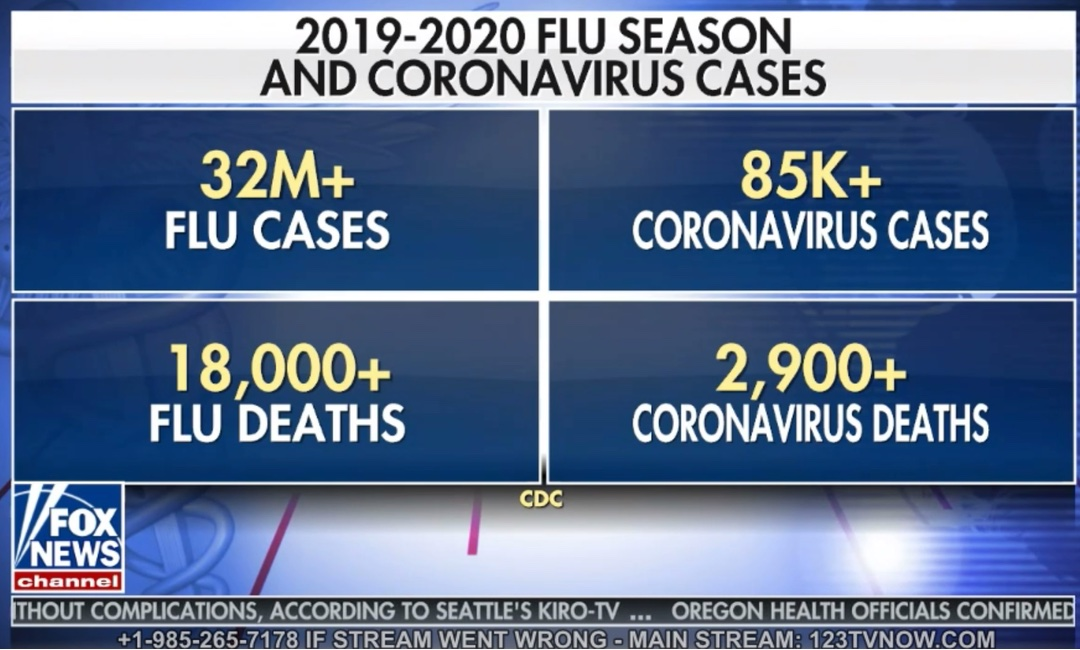 Is the Flu more deadly than Corona Virus?