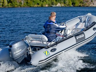 DOWNLOAD Yamaha 50hp (50 hp) Repair Manual